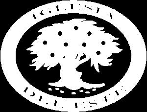 Logo IDE